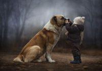 Iznenadiće vas koliko mudrosti ima u riječima 6-godišnjeg dječaka kojem je preminuo pas