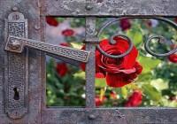 Rumi: 40 pravila ljubavi
