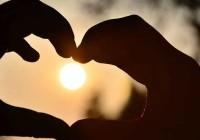 Priča o lasti – Spoznaja duboke ljubavi (VIDEO)