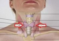 Štitna žlijezda ima značajnu funkciju u našem organizmu, evo šta vam treba da bude zdrava