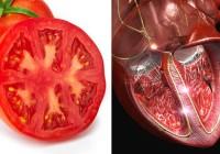 SVE U PRIRODI JE POVEZANO: Po izgledu ploda možemo zaključiti koji organ liječi