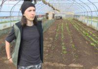 """Učenik Benjamin proizvodi povrće: Vršnjaci misle da je ovo posao za """"seljake"""", a sebi sam kupio auto!"""