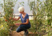 EKO PROIZVODNJA: Staro seosko imanje pretvorila u povrtni raj
