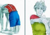 20 slika koje prikazuju pravilno istezanje određenih mišića