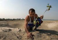 Jadav Molai Payeng – Čovek koji je golim rukama zasadio šumu površine 550 hektara